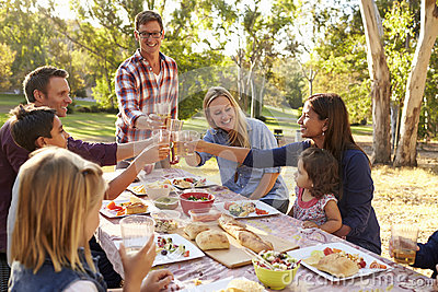 stock image of two families making a toast at picnic at a table in a park