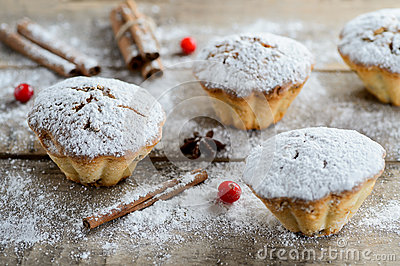 Christmas winter food composition: cakes in icing sugar with cranberry and cinnamon