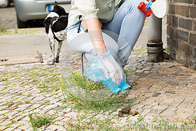 Female Picking Up Dog Feces