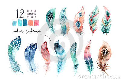 Hand drawn watercolor paintings vibrant feather set. Boho style