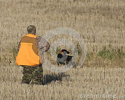 A Pheasant Hunter and his dog