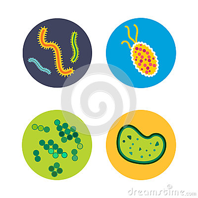 Bacteria virus microscopic isolated microbes icon human microbiology organism and medicine infection biology illness