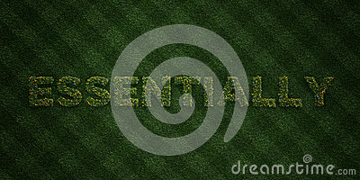 ESSENTIALLY - fresh Grass letters with flowers and dandelions - 3D rendered royalty free stock image