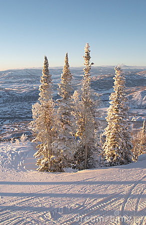 Ski slopes at winter