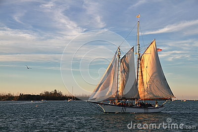 Sailboat on the sunset - Key West - Florida - USA