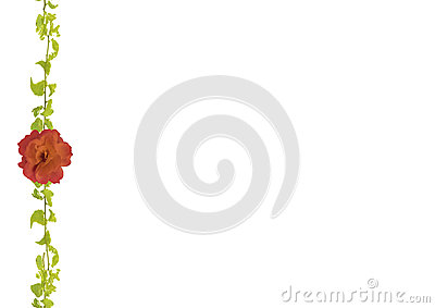 Stationery Background with Decorated Floral Borders