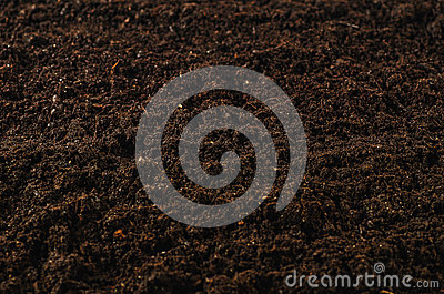 Fertile garden soil texture background top view