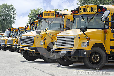 stock image of school busses lined up to transport kids