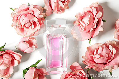 Perfume bottle in pink flower roses. Spring background with luxury aroma parfume. Beauty cosmetic shot
