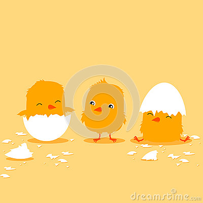 Three cartoon baby chicks hatching. Cute illustration for children