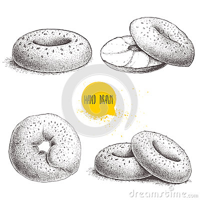 Hand drawn sketch style sesame bagels set on white background. Bagel, sliced bagel with cream cheese.