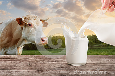 Milk from jug pouring into glass with splashes