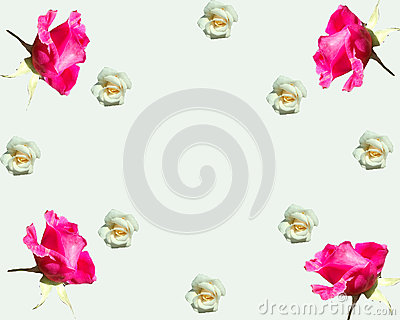 Floral rhapsody with roses