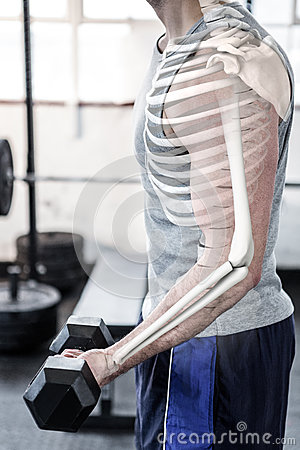 Highlighted arm of strong man lifting weights at gym