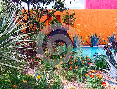 A show garden at the Chelsea Flower Show