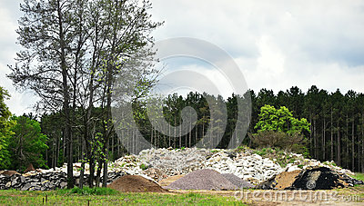 Piles of Earth in Front of Forest