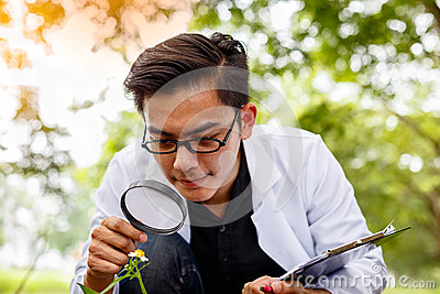 Asian biotechnology scientist working examining plants at forest