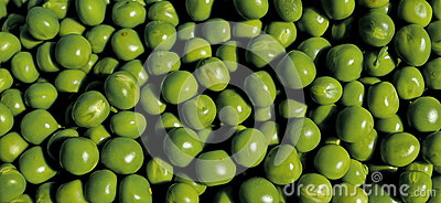Pea grains