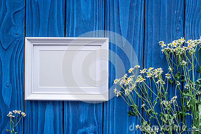 Summer compisition with camomile flowers and frame on blue wooden desk background top view mock up