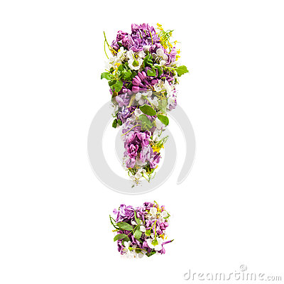 Exclamation mark from natural meadow flowers and lilacs on a white background..