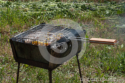fish with vegetables cooked on the grill grate on an iron grill, which stands on the grass