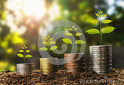 stock image of money growht in soil and tree concept , business success finance