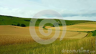 The Long Man of Wilmington is a hill figure on the steep slopes of Windover Hill near Wilmington, East Sussex, England