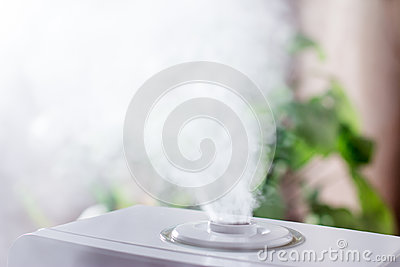 Steam humidifier in the house