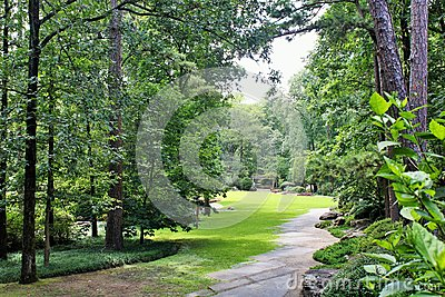 Wooded path in garden