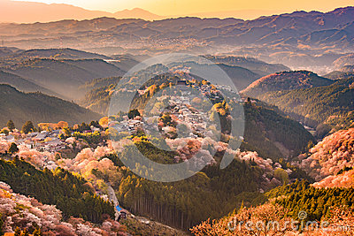 Yoshinoyama, Japan in Spring