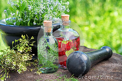 Mortar of healing herbs, herbal tincture, healthy infusion and medicinal plants.