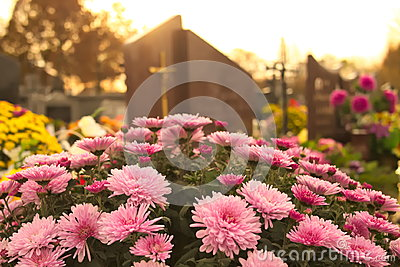 Flowers on a grave at cemetery