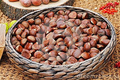 Chestnuts in a wicker basket