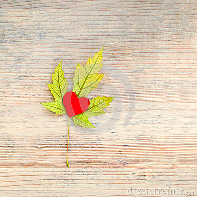 Autumn yellow maple leaf with red heart inside on a wooden background.