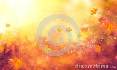 Fall background. Autumn colorful leaves