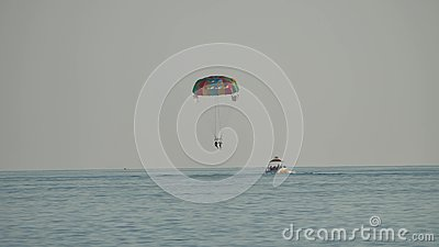 Paraplane. People fly by paragliding on the sea. Entertainment at sea parachute flight ocean