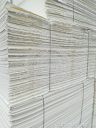 Paper pulp packed