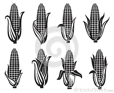 Corn images set