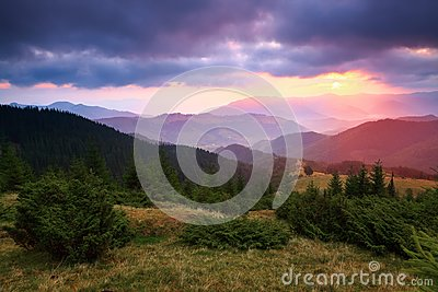 UUnder the purple sky lay down mountain hills covered with creeping pines.