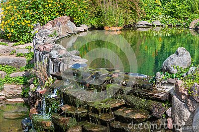 Old pond in garden