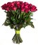 Rose flowers bouquet isolated