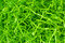 Easter grass, vibrant green made of shredded crimped paper