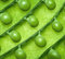 Background of green peas.