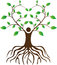 People love tree with roots