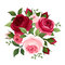 Red and pink roses.