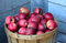 Bushel of Michigan  apples