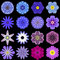 Big Collection of Various Blue Pattern Flowers Isolated on Black