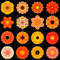 Big Collection of Various Orange Pattern Flowers Isolated on Black