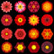 Big Collection of Various Red Pattern Flowers Isolated on Black