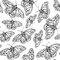 Sketch butterfly, vector vintage seamless pattern